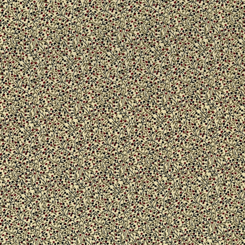 3435-001 BRISK-MILKWEED