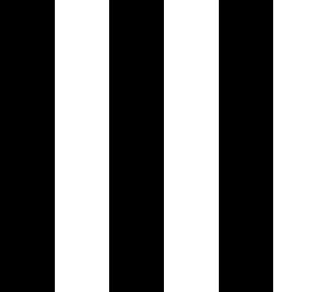 vf201bk1_chic_stripe_black