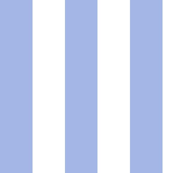 vf201bl2_chic_stripe_blue