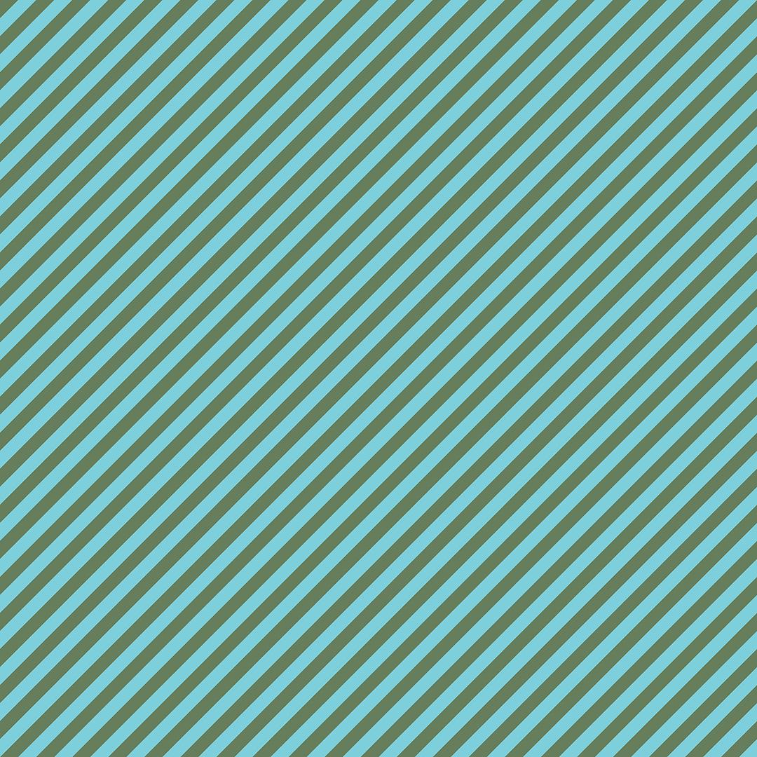 vf202aq3_proper_stripe_aqua