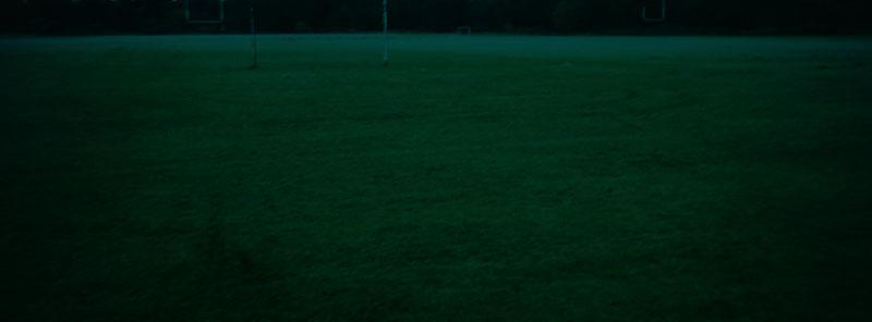 fields, 2005