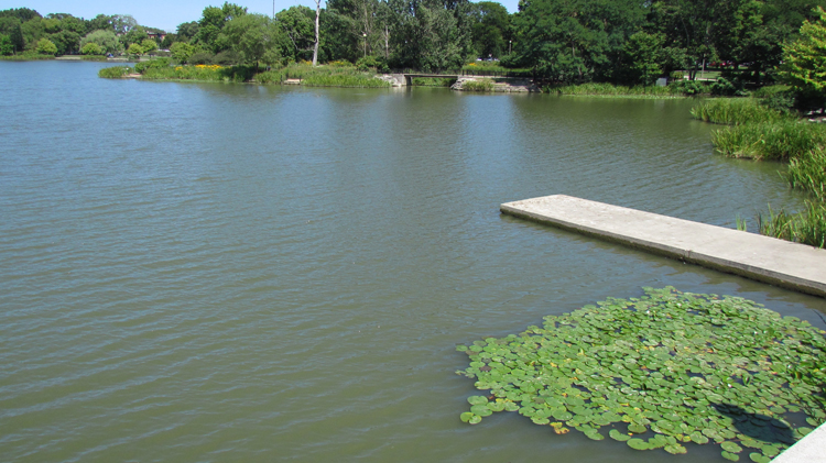 Humboldt Park Lagoon