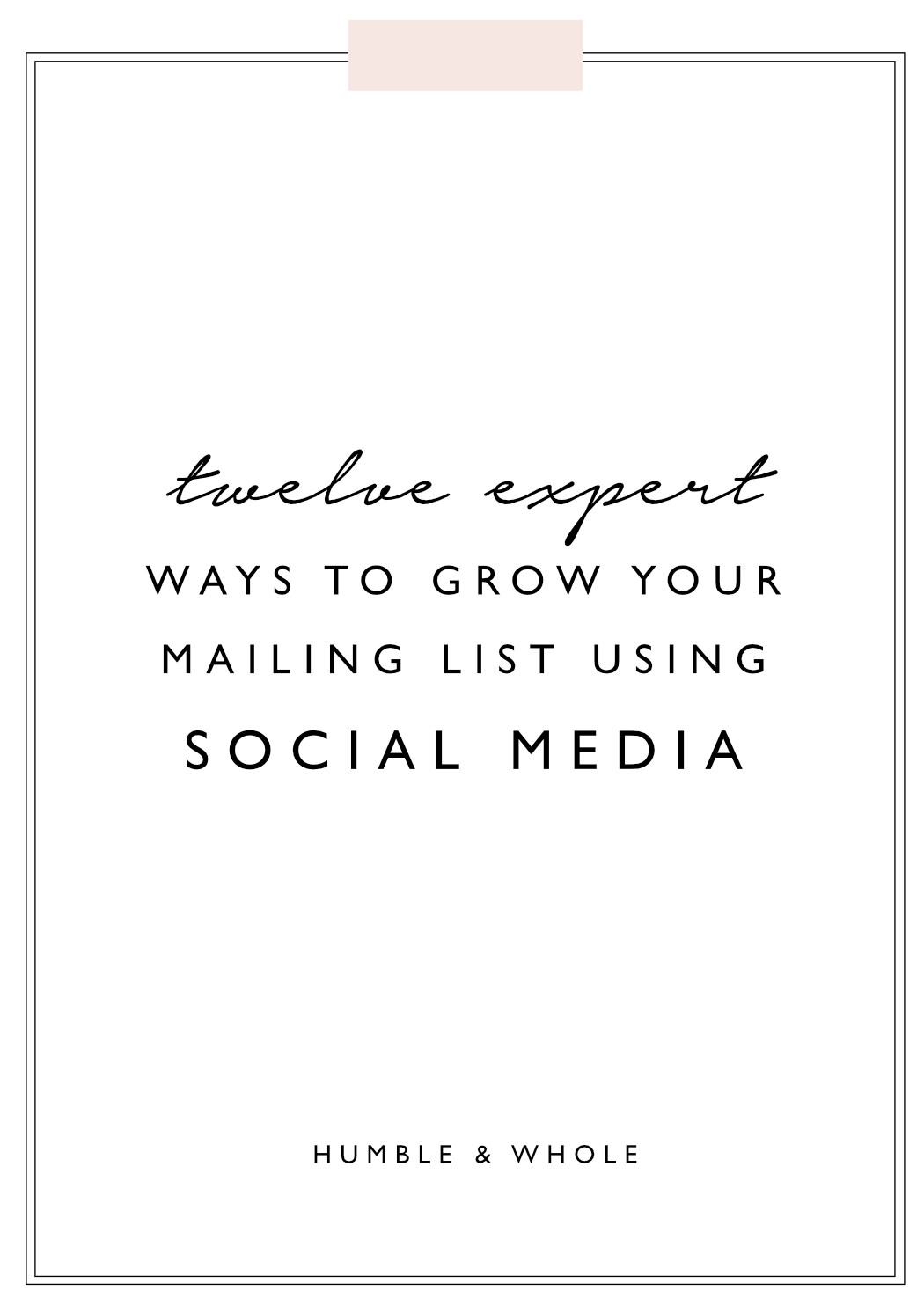 Your mailing list is one of the most important components of your business, and it is critical not to rely on a huge social media following for the sustainability of your business.  Check out these twelve tips and learn how to convert your social media followers into mailing list subscribers!