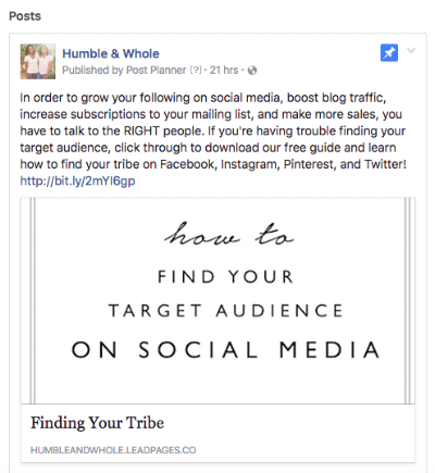 Facebook Pinned Posts Example