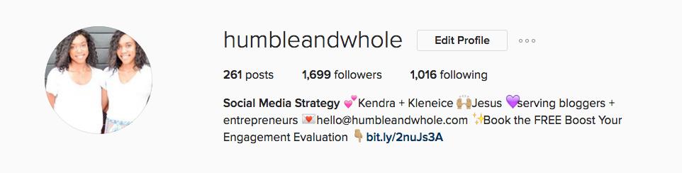 Instagram Business Bio