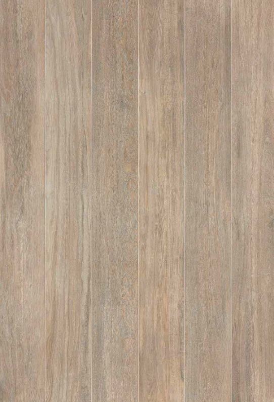 Featured Oak - Cream