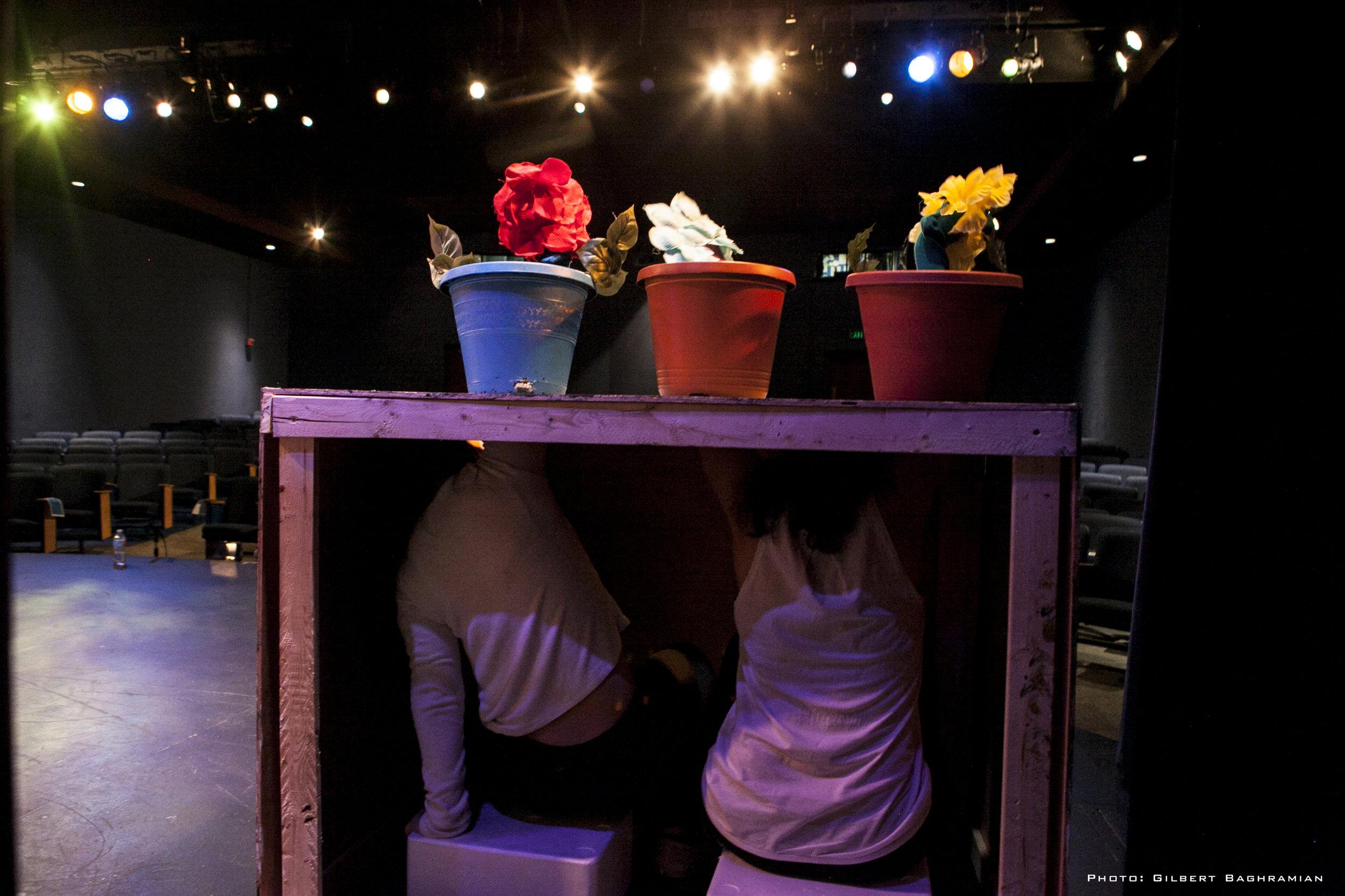 Secret of the flower pot_98.jpg