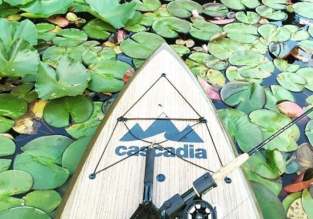 Stability is Key - All of our Cascadia paddle boardsare a minimum of 30
