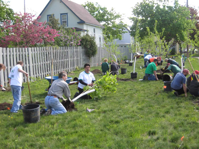 It takes a team: volunteers from Ryan Companies get a tree ready to plant.