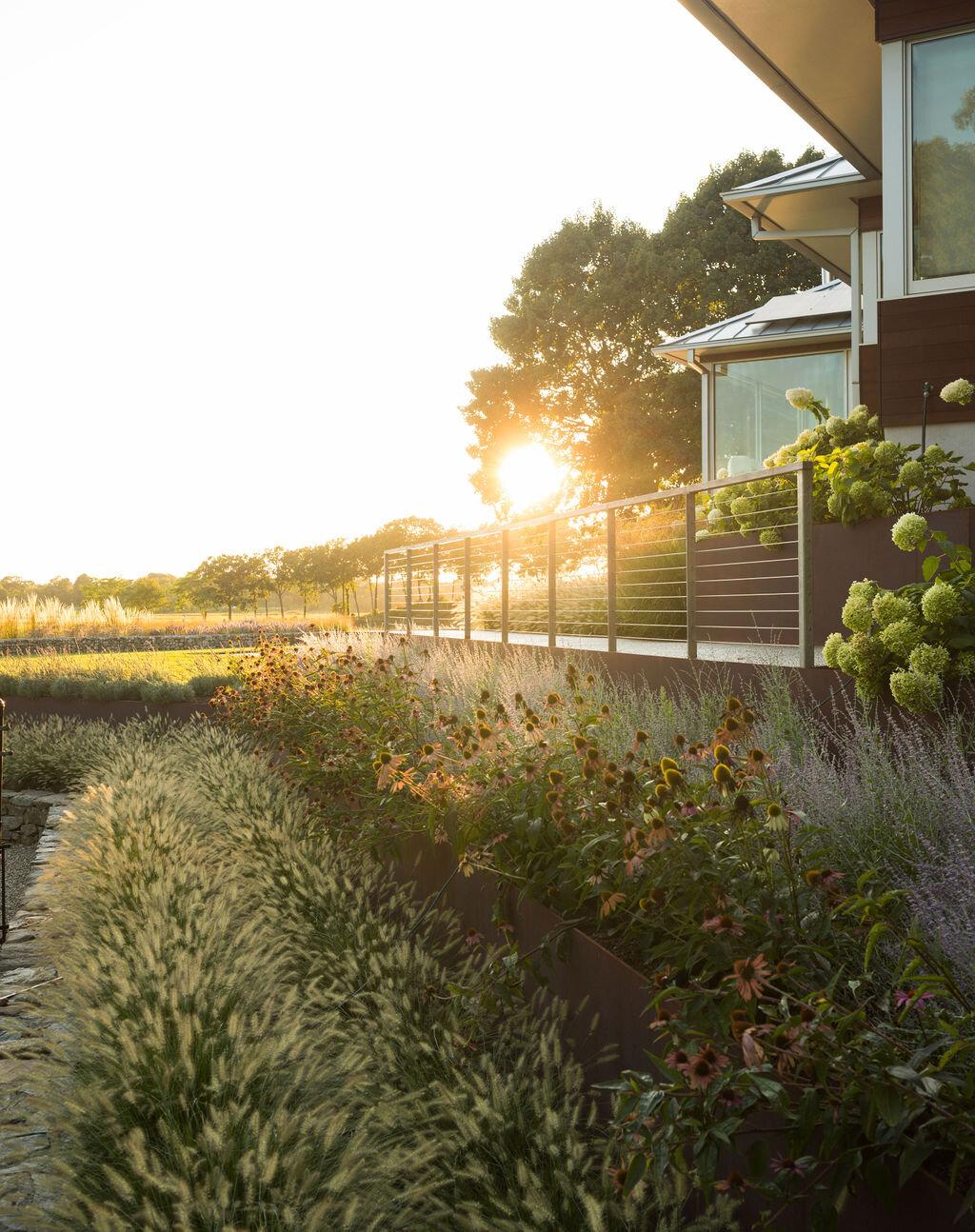 Artemis Landscape Architects