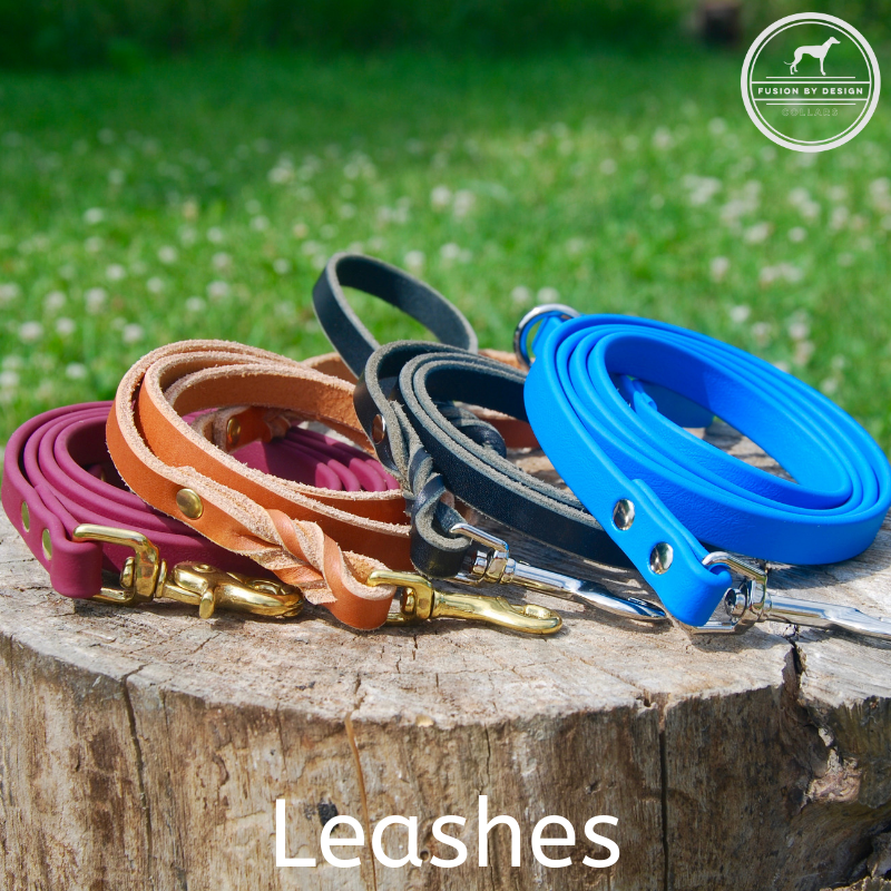 FBD-Leashes_new.png