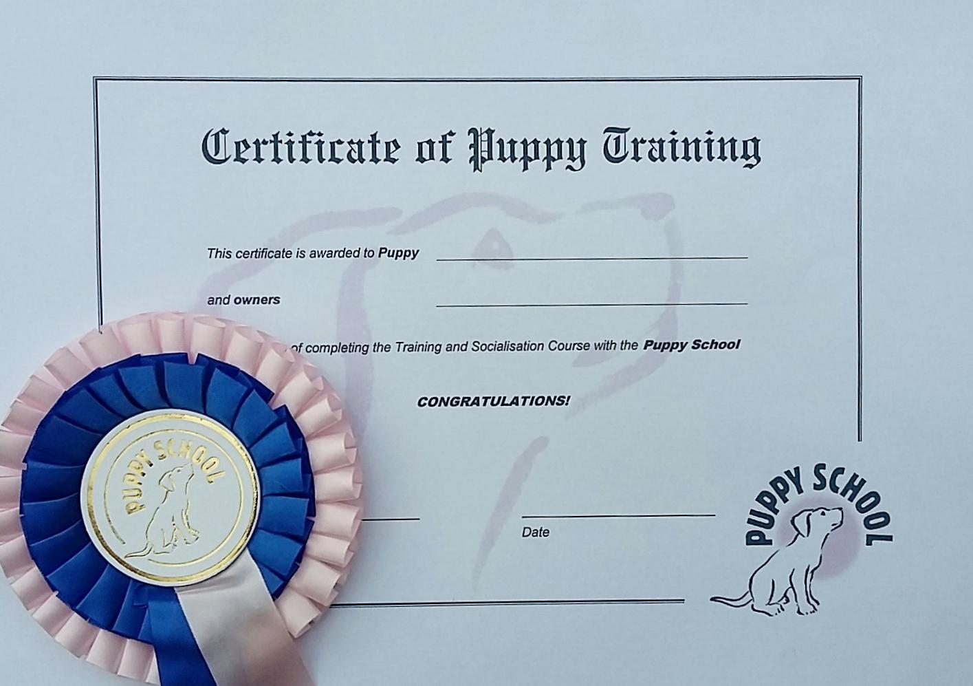 puppy school certificate