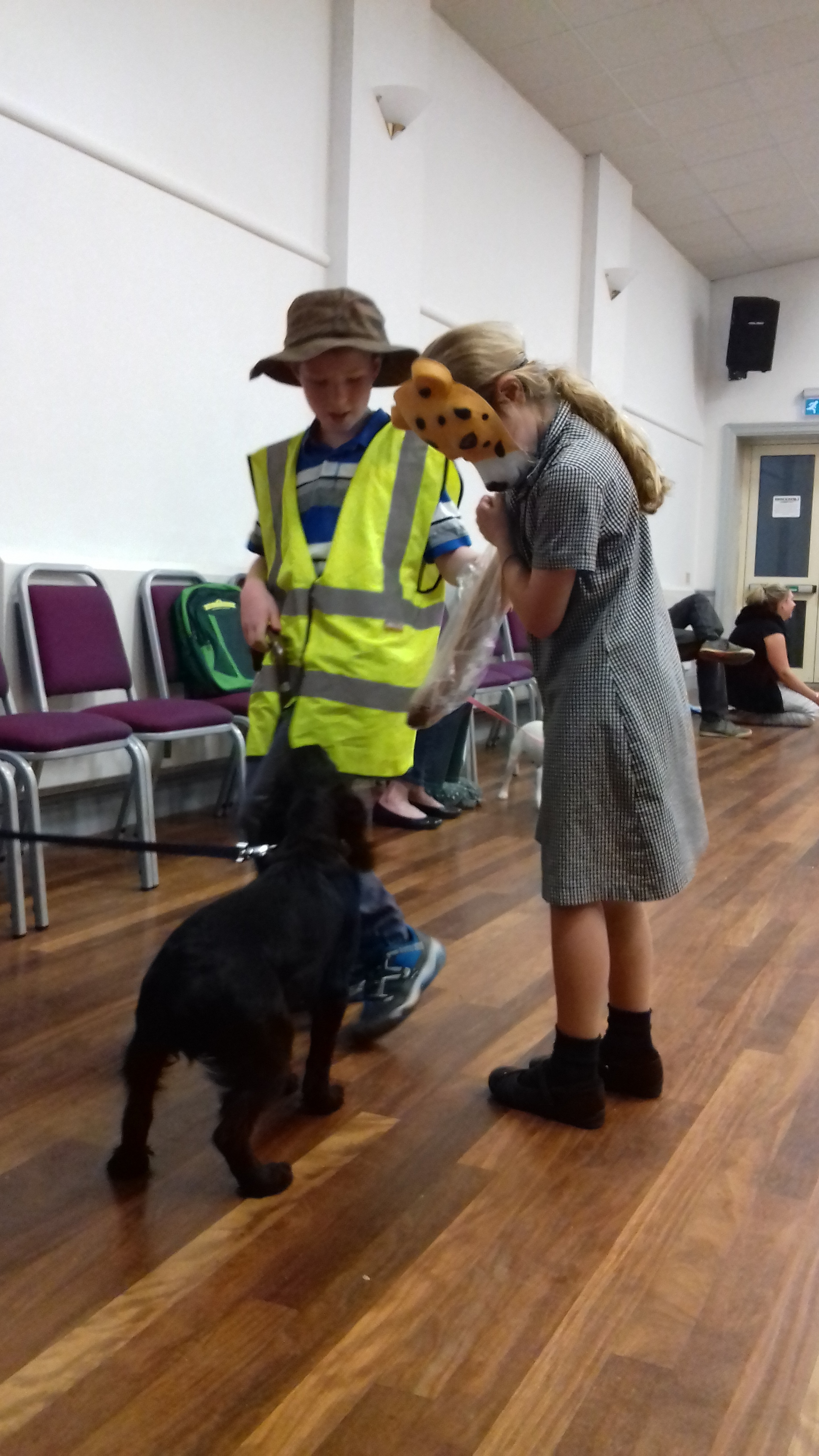 Puppy School class in Brockham