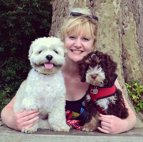 Professional dog training in Reigate