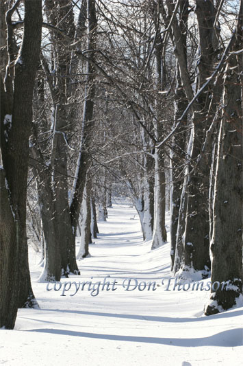 PubGard-winter2.jpg