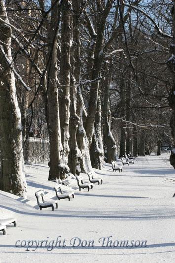 PubGard-winter3.jpg