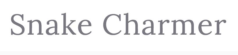 6.SNAKE CHARMER DESIGN .png