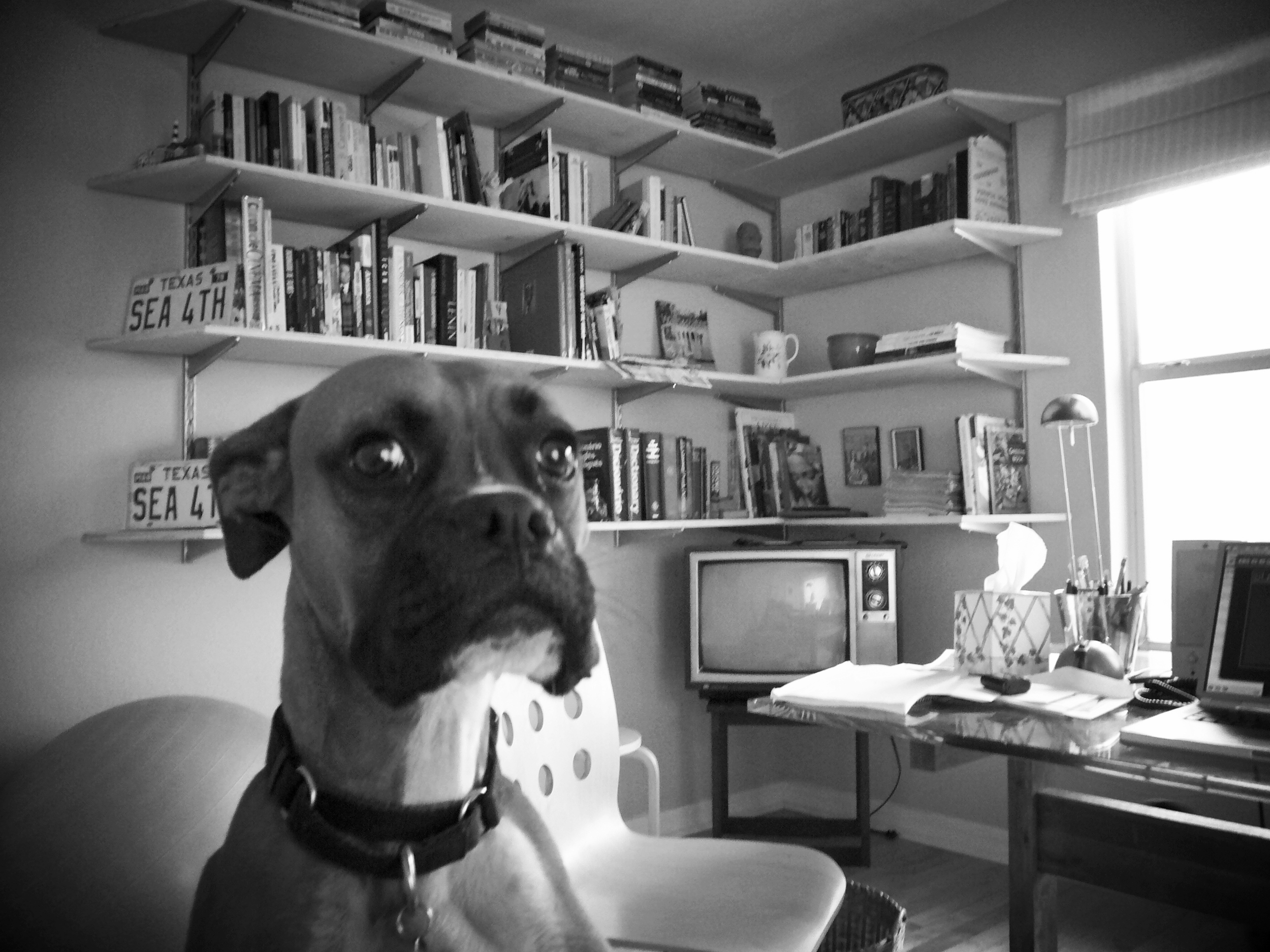 Ali, the Boxer, in the editing room.