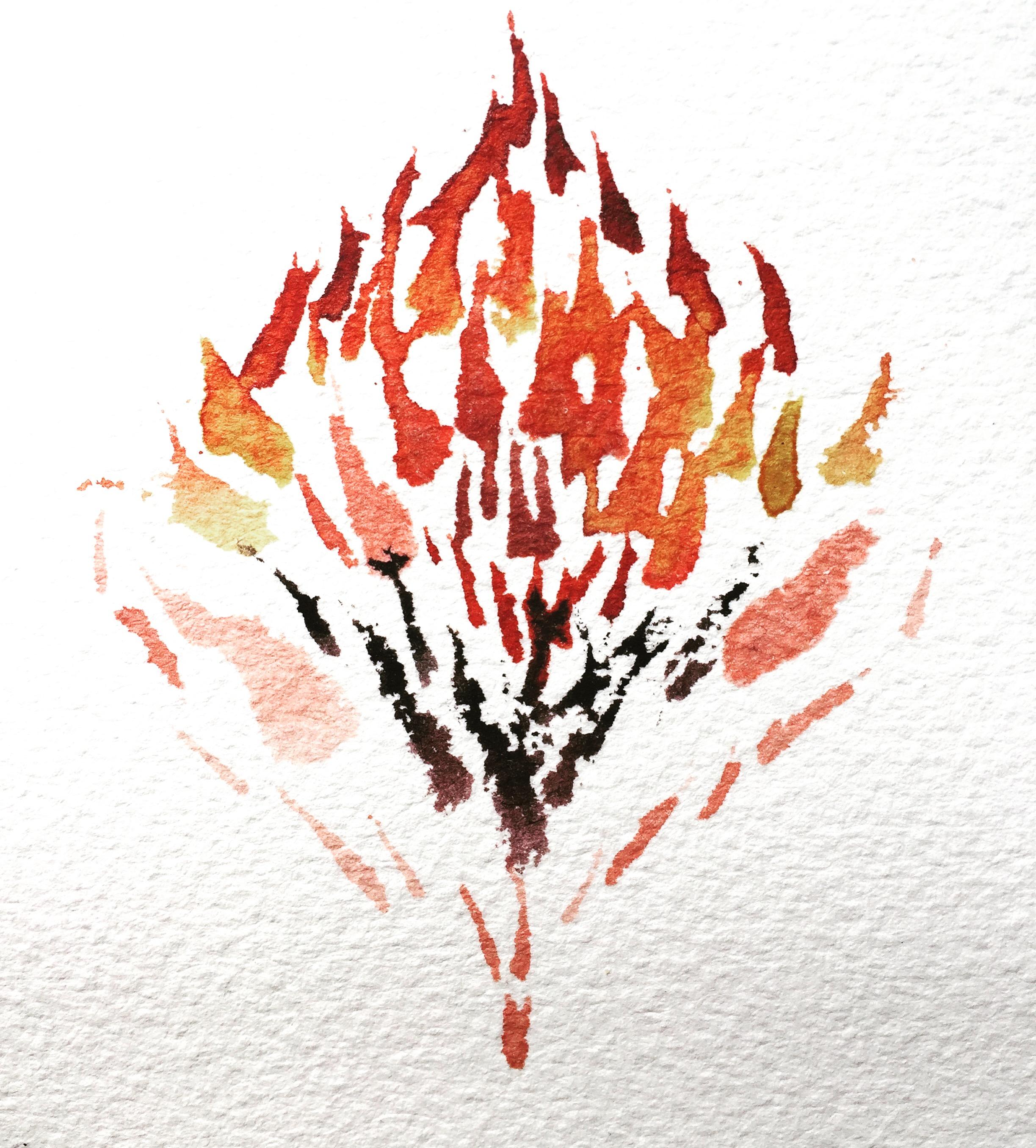 Fireflower, 2016