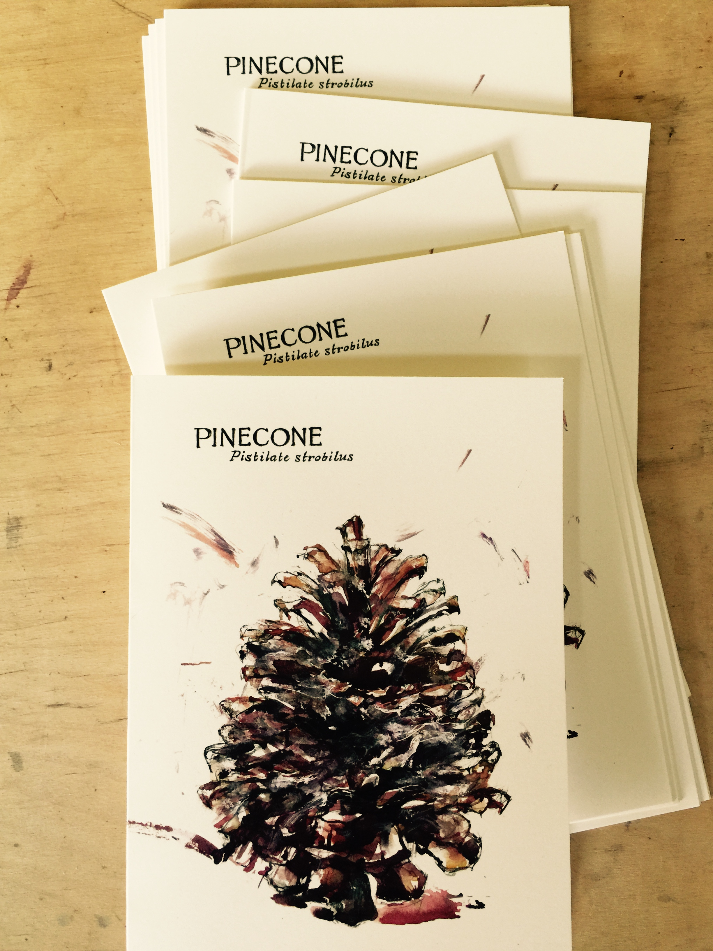 Pinecone (favorite J.Heloise greeting card!)