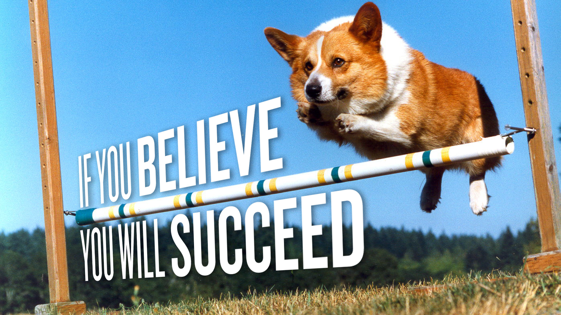 if-you-believe-you-will-succeed-awesome-graphic-share-on-facebook1.jpg
