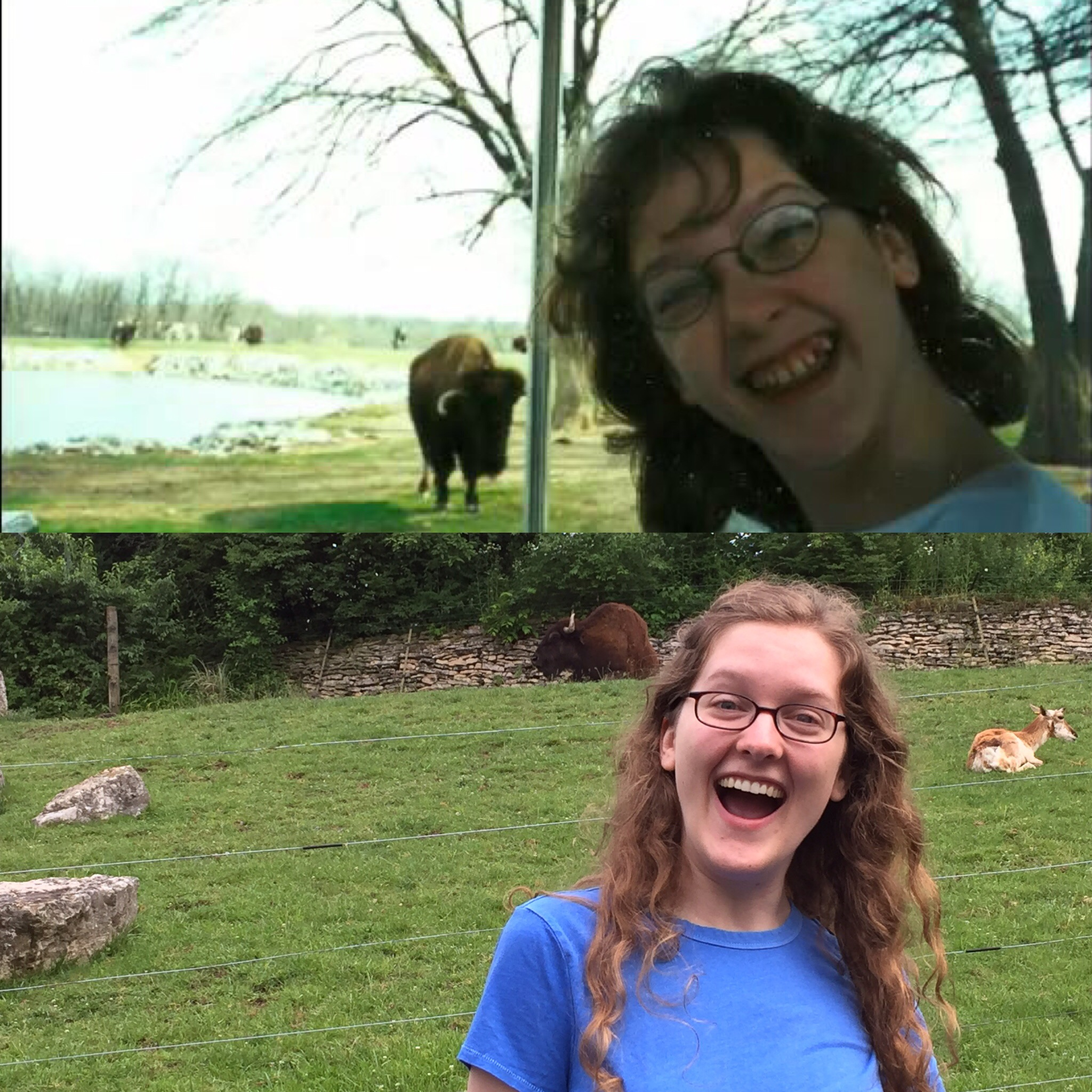 Top panel: I had recently turned twelve, and was terribly excited to see a buffalo.  Bottom panel: I had recently turned twenty-seven, still terribly excited to see a buffalo, this time with many years of orthodontia under my belt.  Photo credit: My sister, who took both of these photos. fifteen years apart.