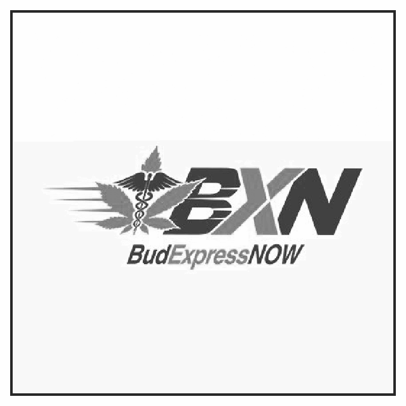 budexpress-influencer-program-instagram-counter-culture-agency-canada-influencer-agency.png