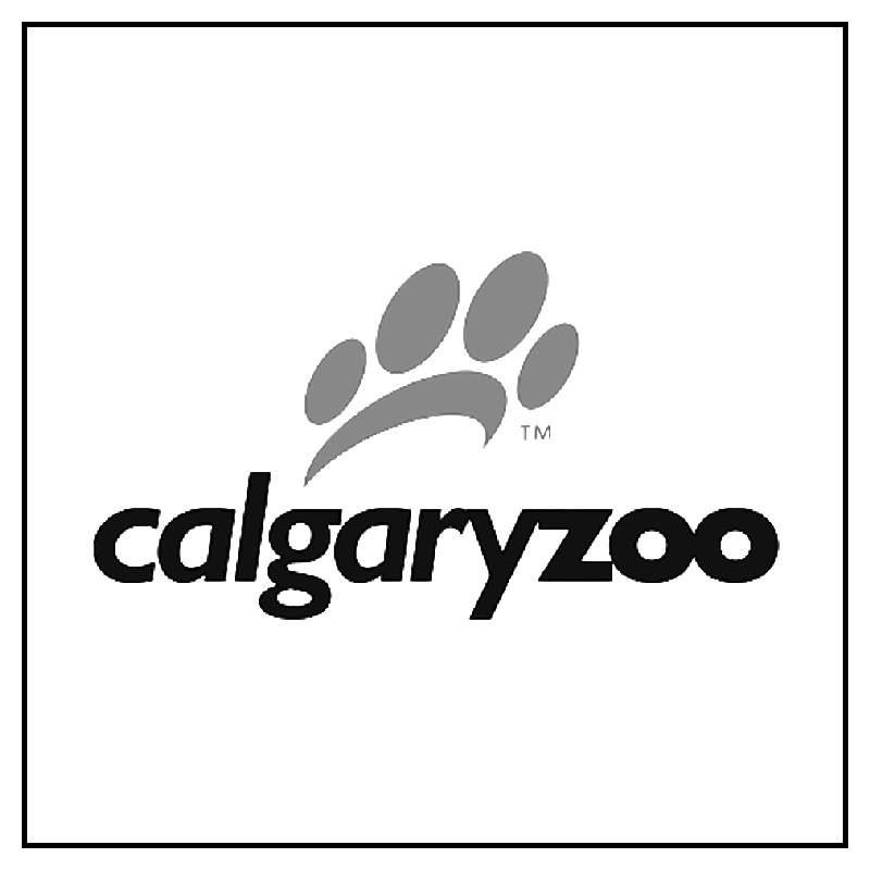 calgary-zoo-influencer-program-instagram-counter-culture-agency-canada-influencer-agency.png