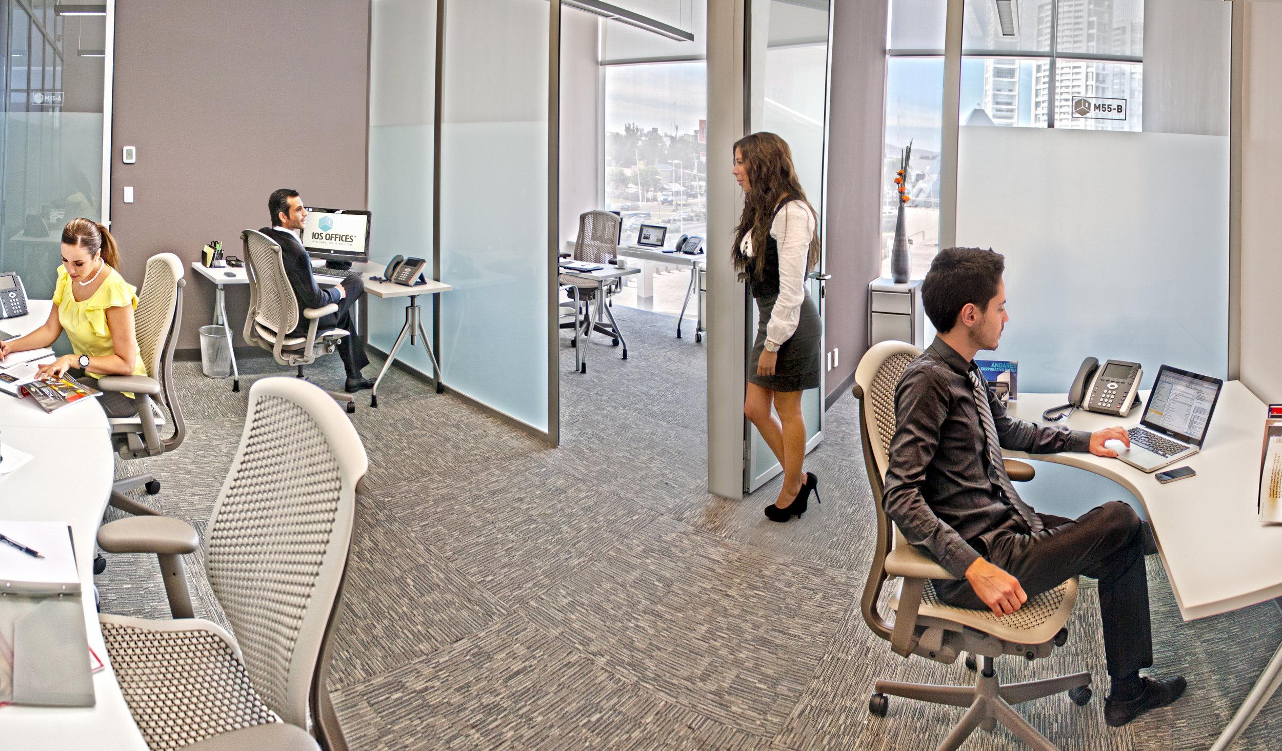 IOS OFFICES INSURGENTES SUR CORPORATE SUITE 1.jpg