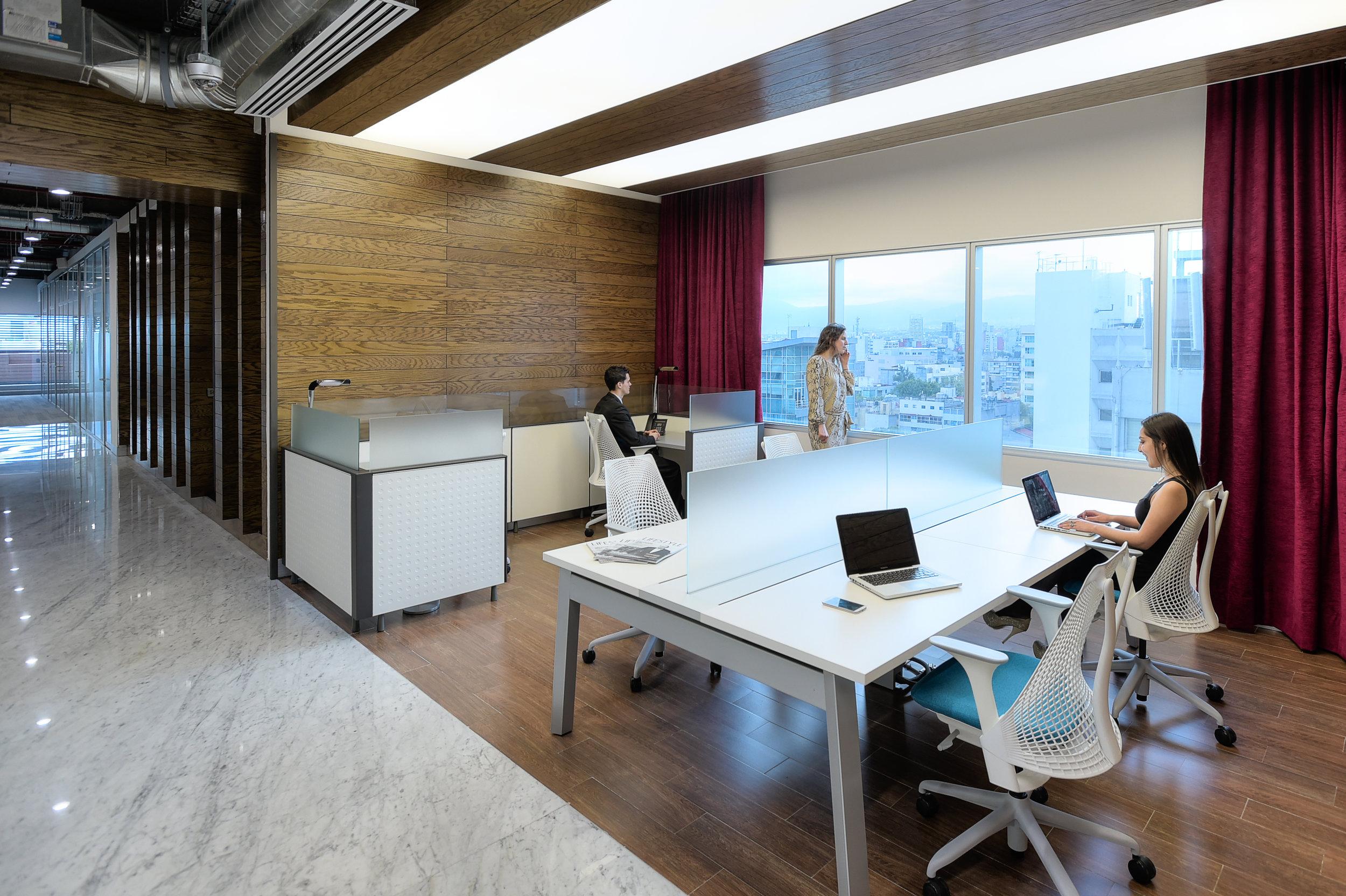 business lounge___TorreReformaDian053.jpg