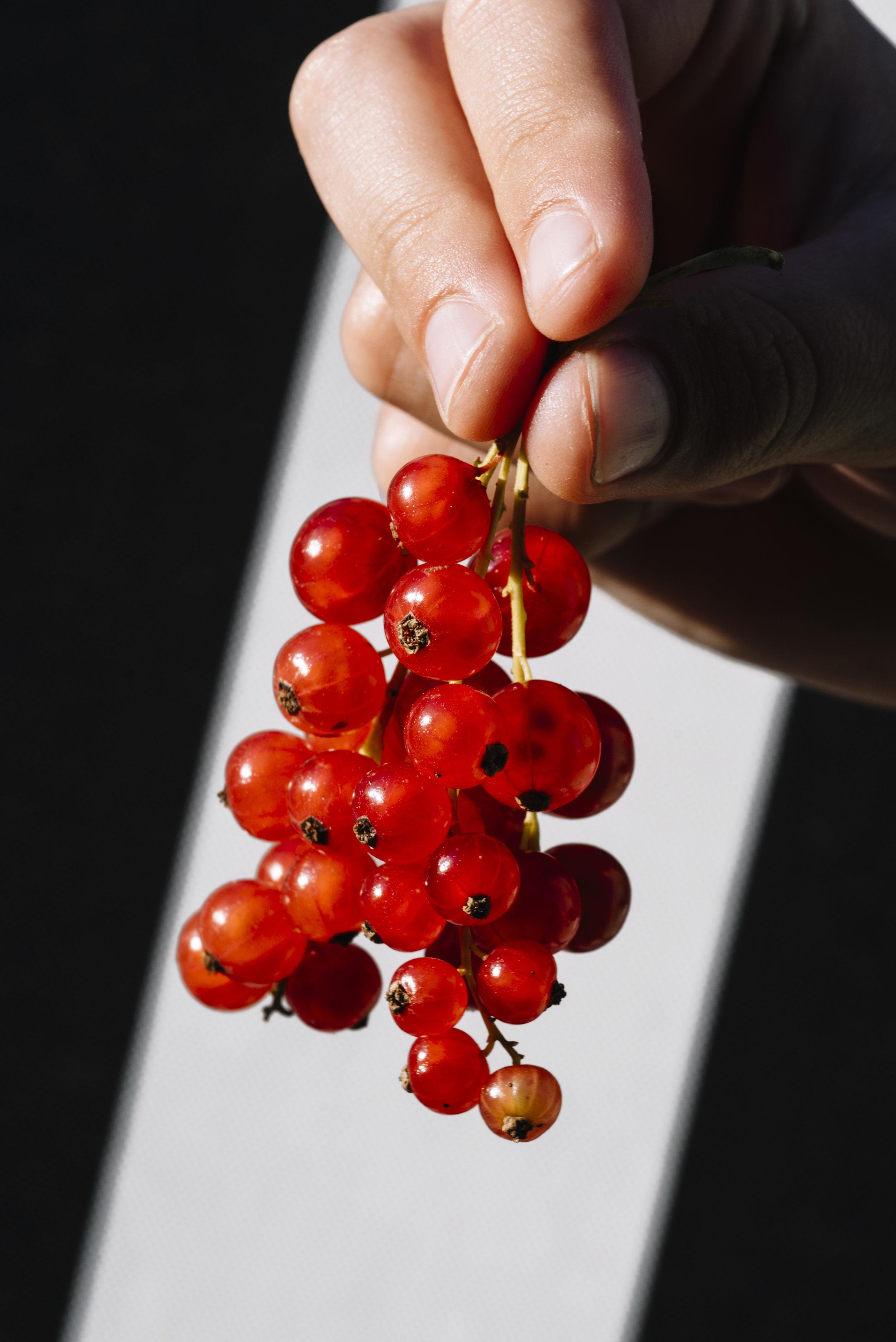 sour berries-6.jpg