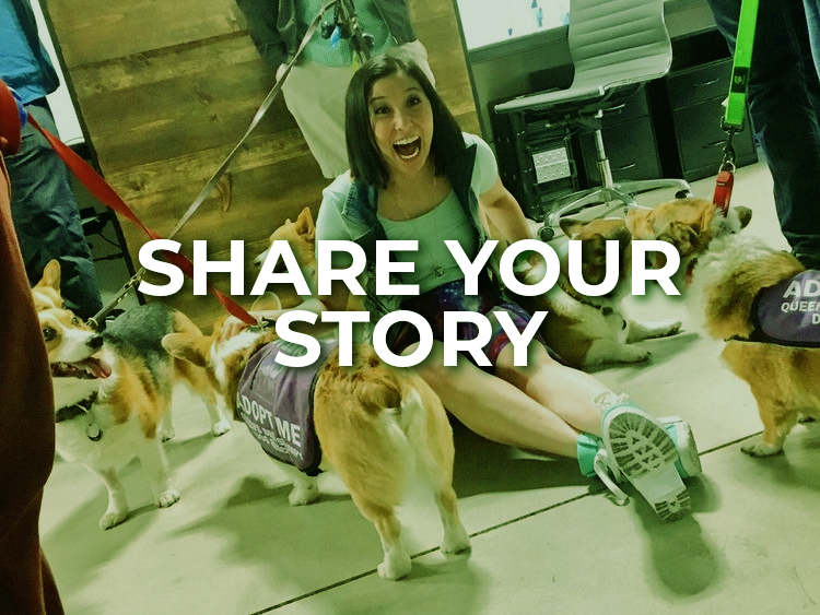 ShareStory.jpg
