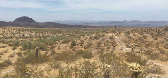 View looking west across the La Paz rare earth project area