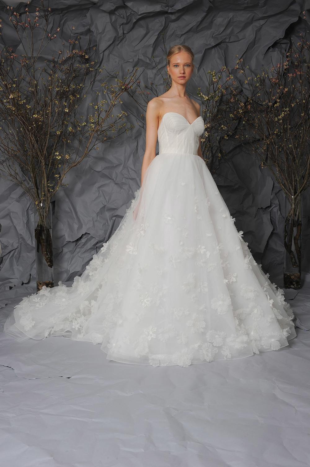 Bridal Collection — Austin Scarlett