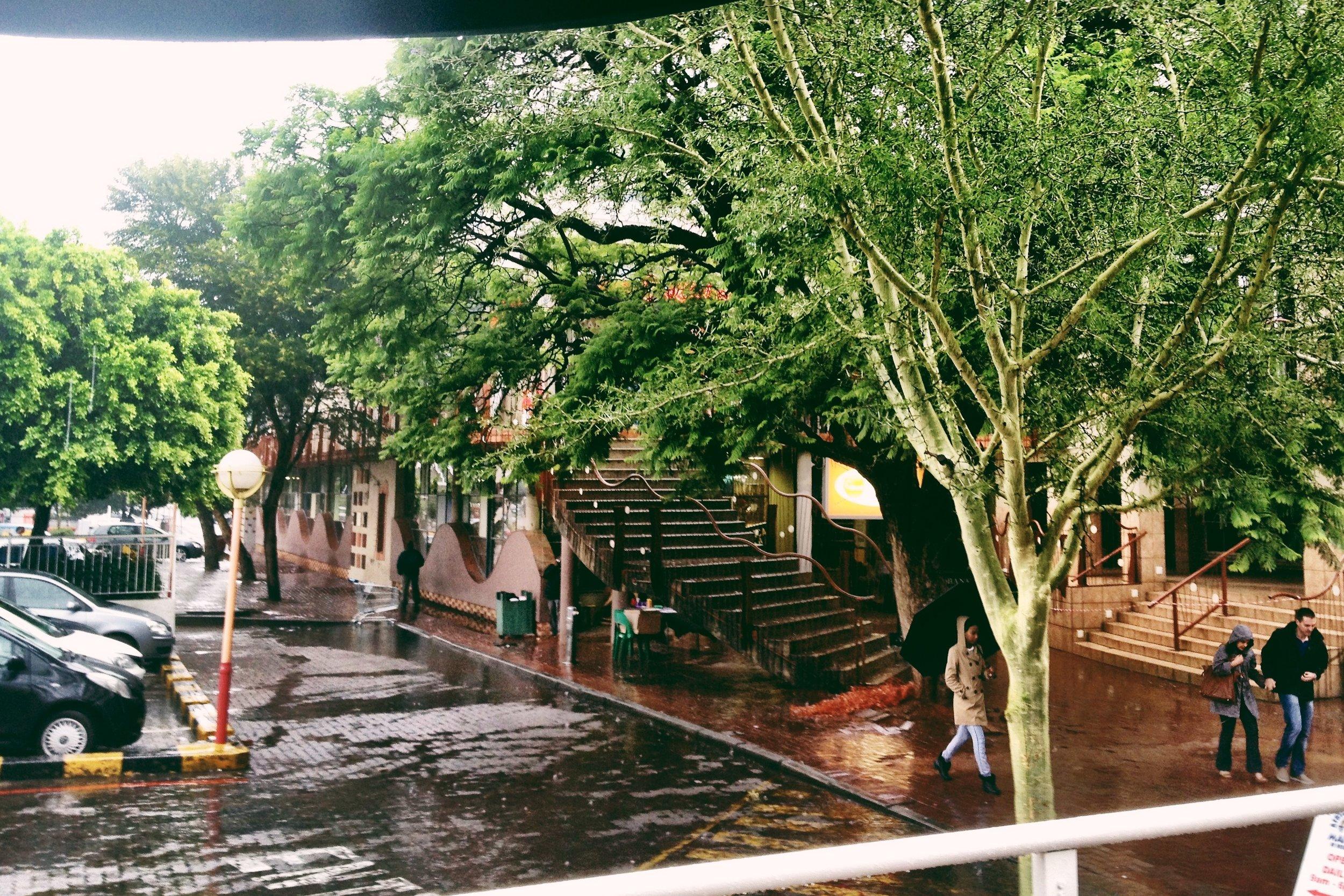 #19 Rainy at Rosebank-8410078011.jpg