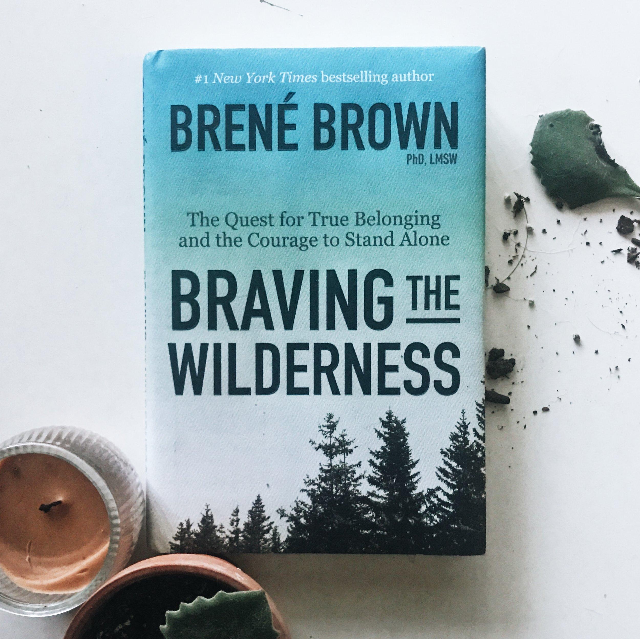 #333 Braving the Wilderness.JPG