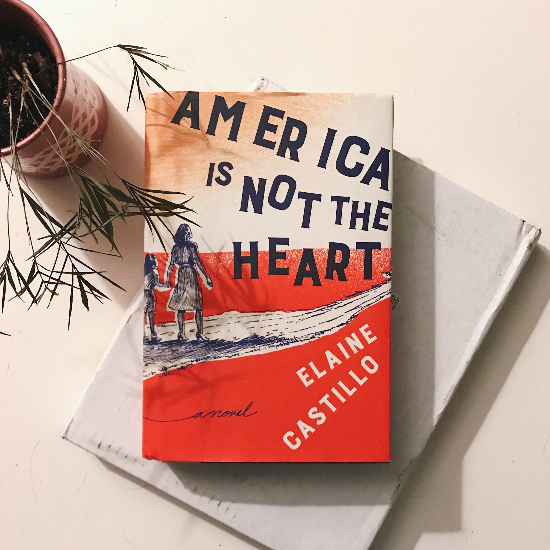 #227 America Is Not The Heart.JPG
