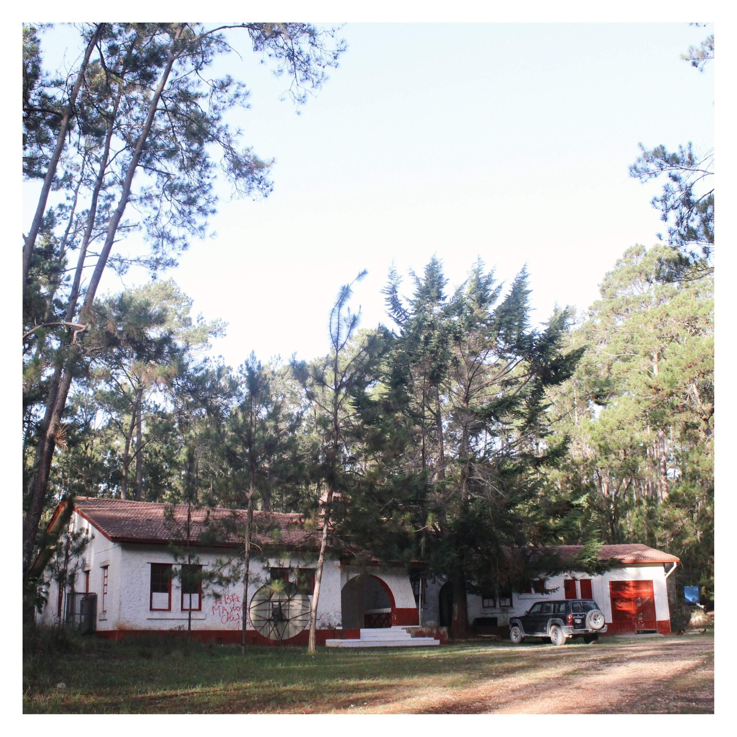 19 Pine Forest Lodge.JPG