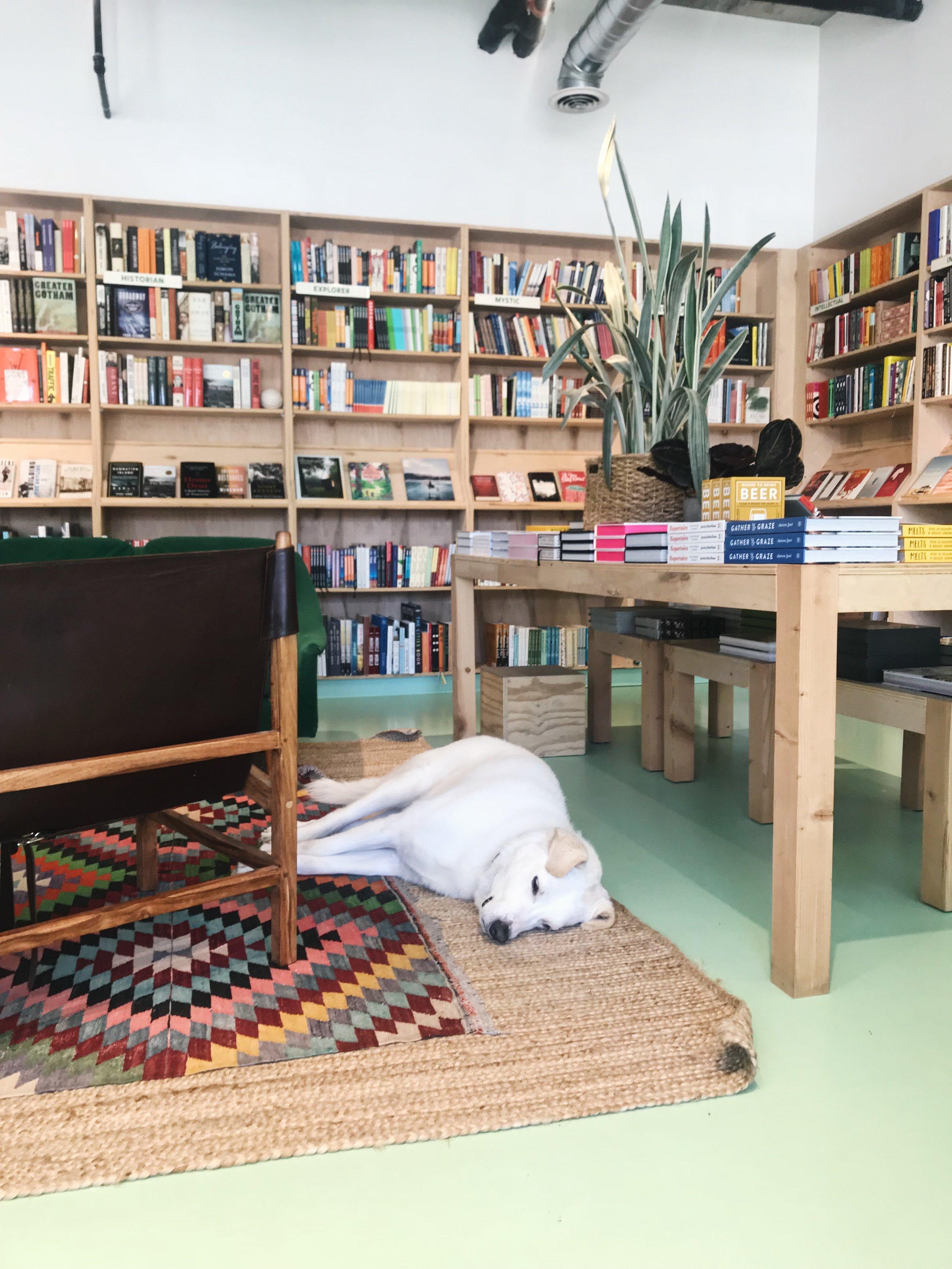 15 - Commonplace Books.JPG