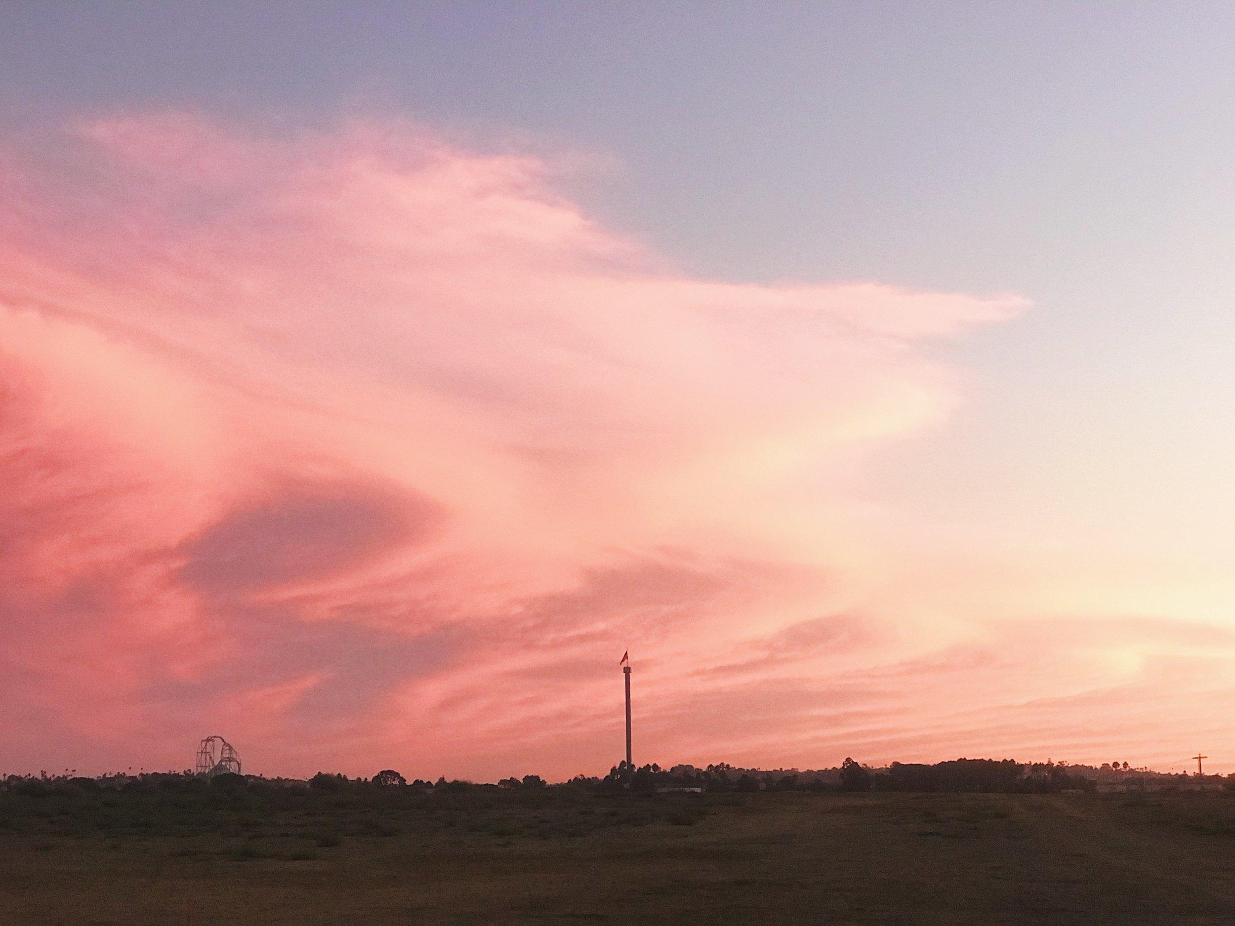 #284 The Pink Sky.JPG