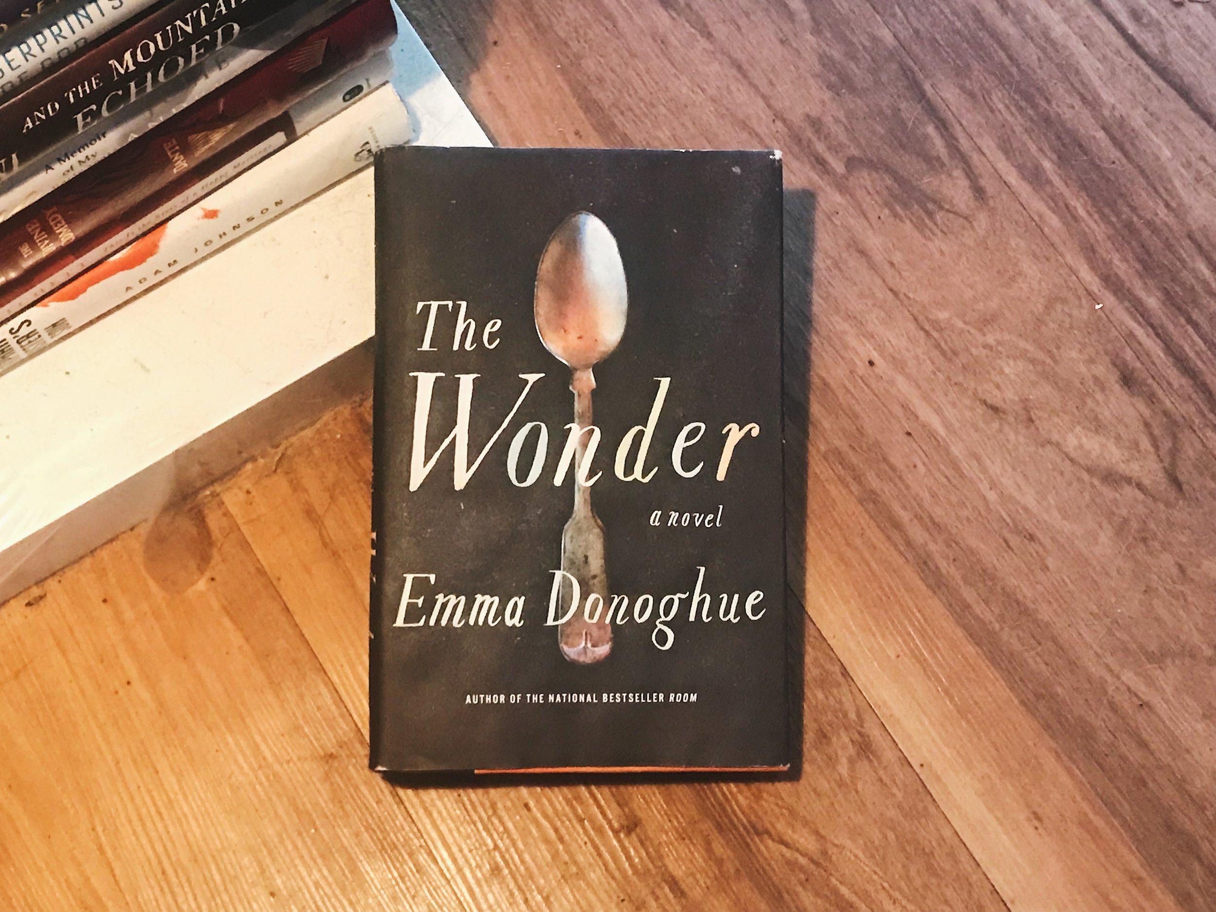 #355 The Wonder.JPG