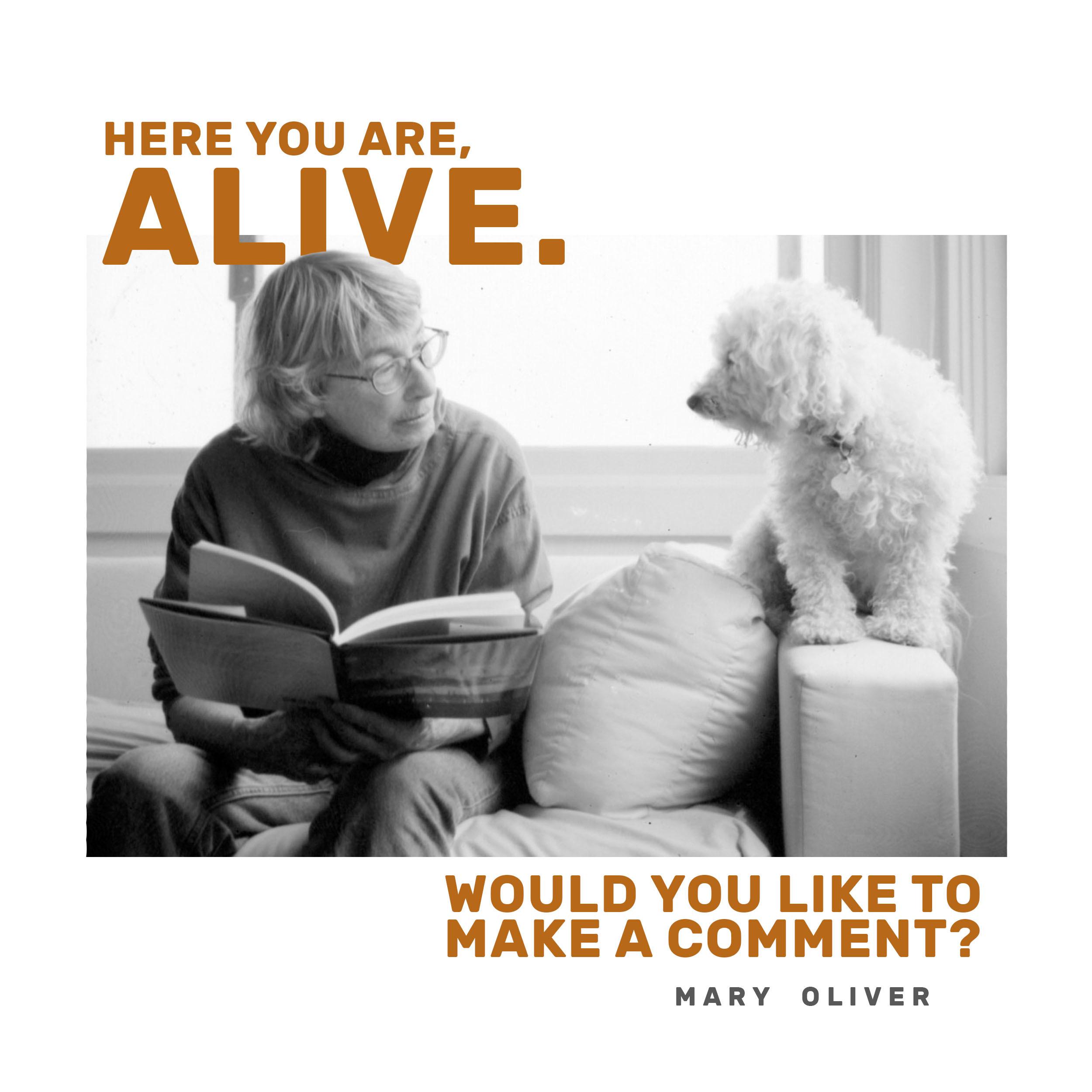 16 Mary Oliver.JPG