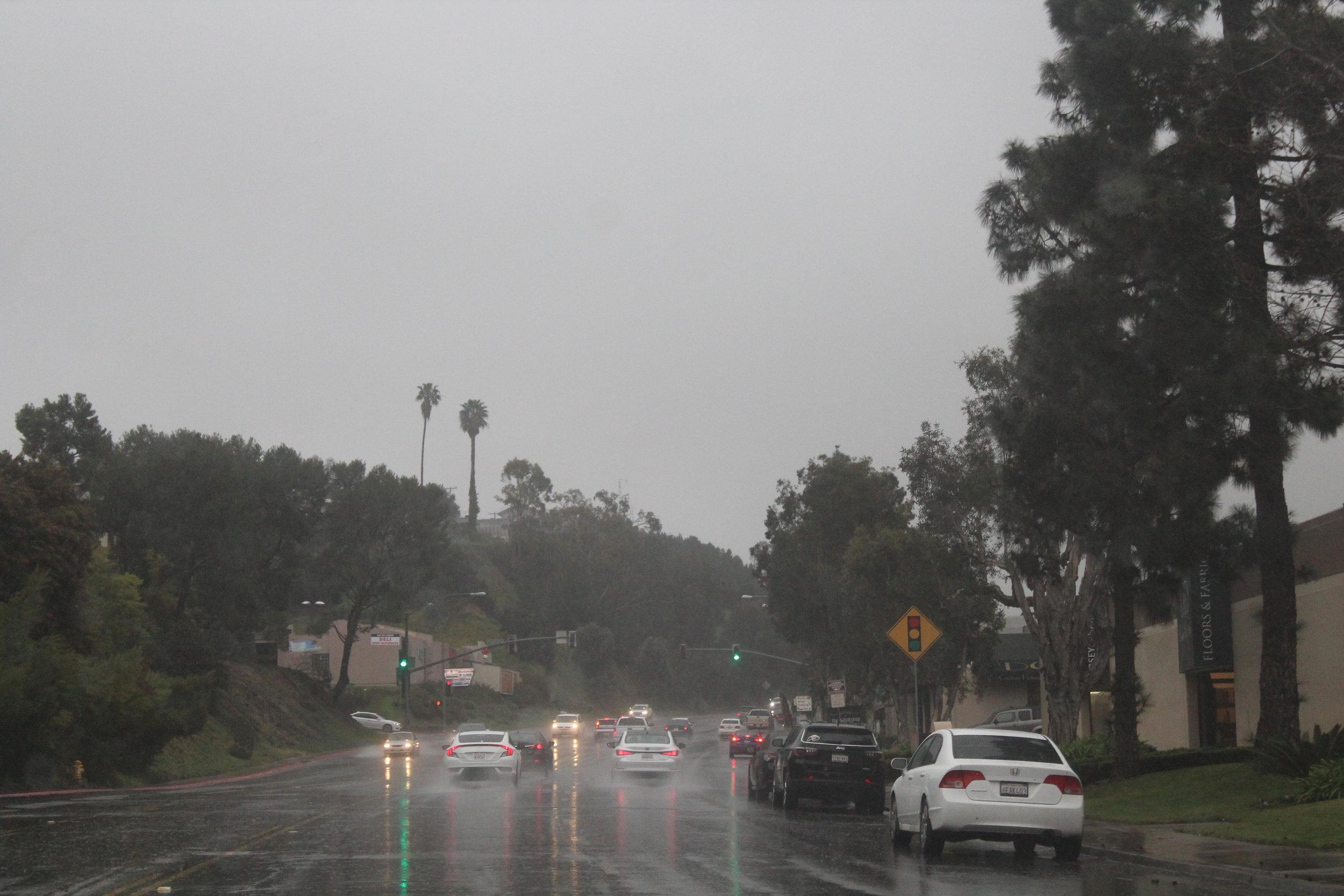 Wet Days [1].JPG