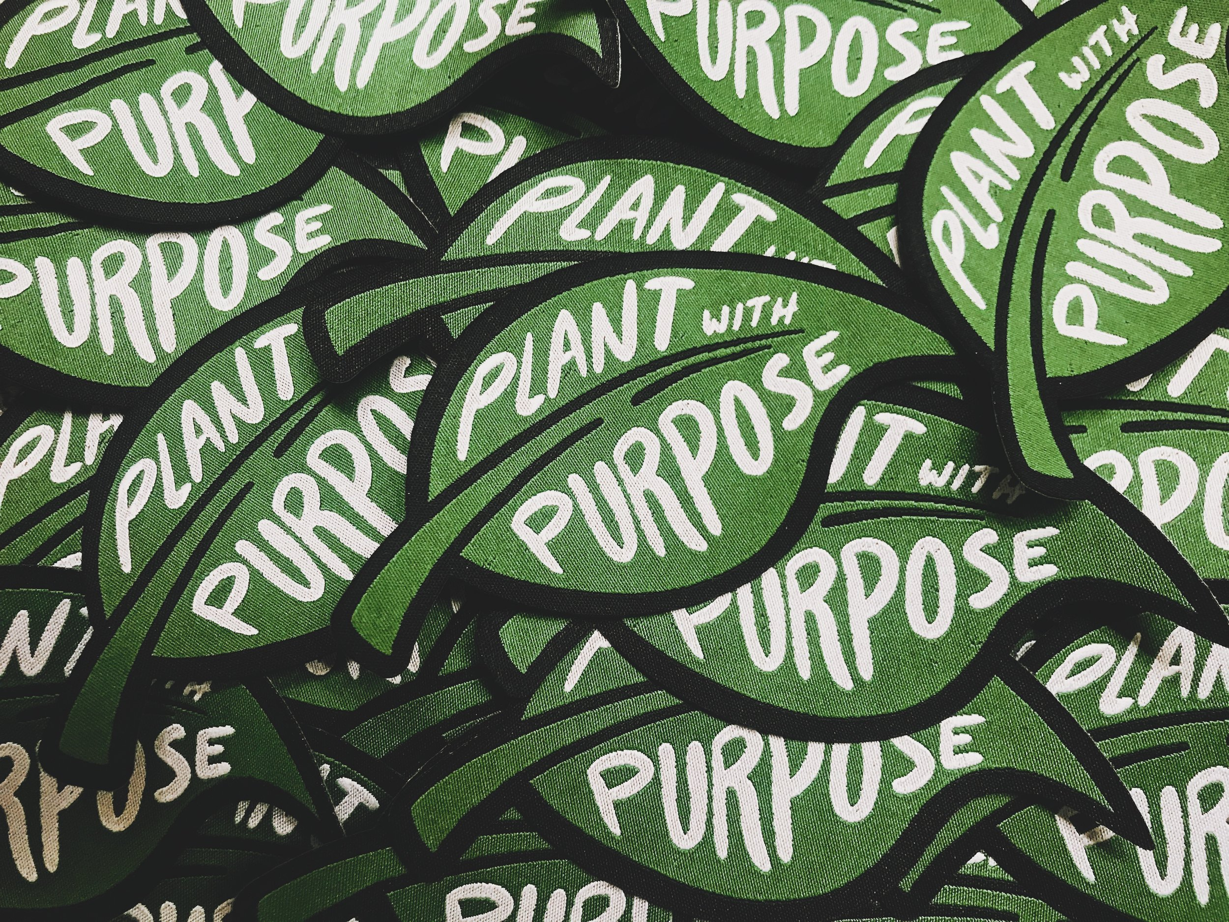 #72 Two Years at Plant With Purpose.JPG