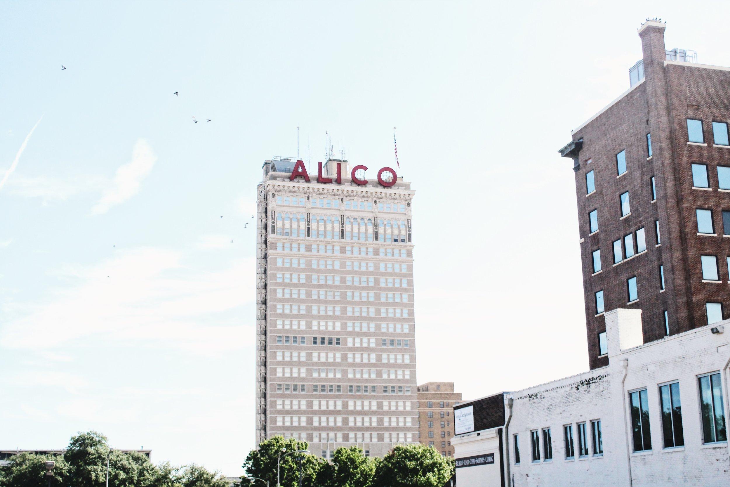 ALICO.JPG