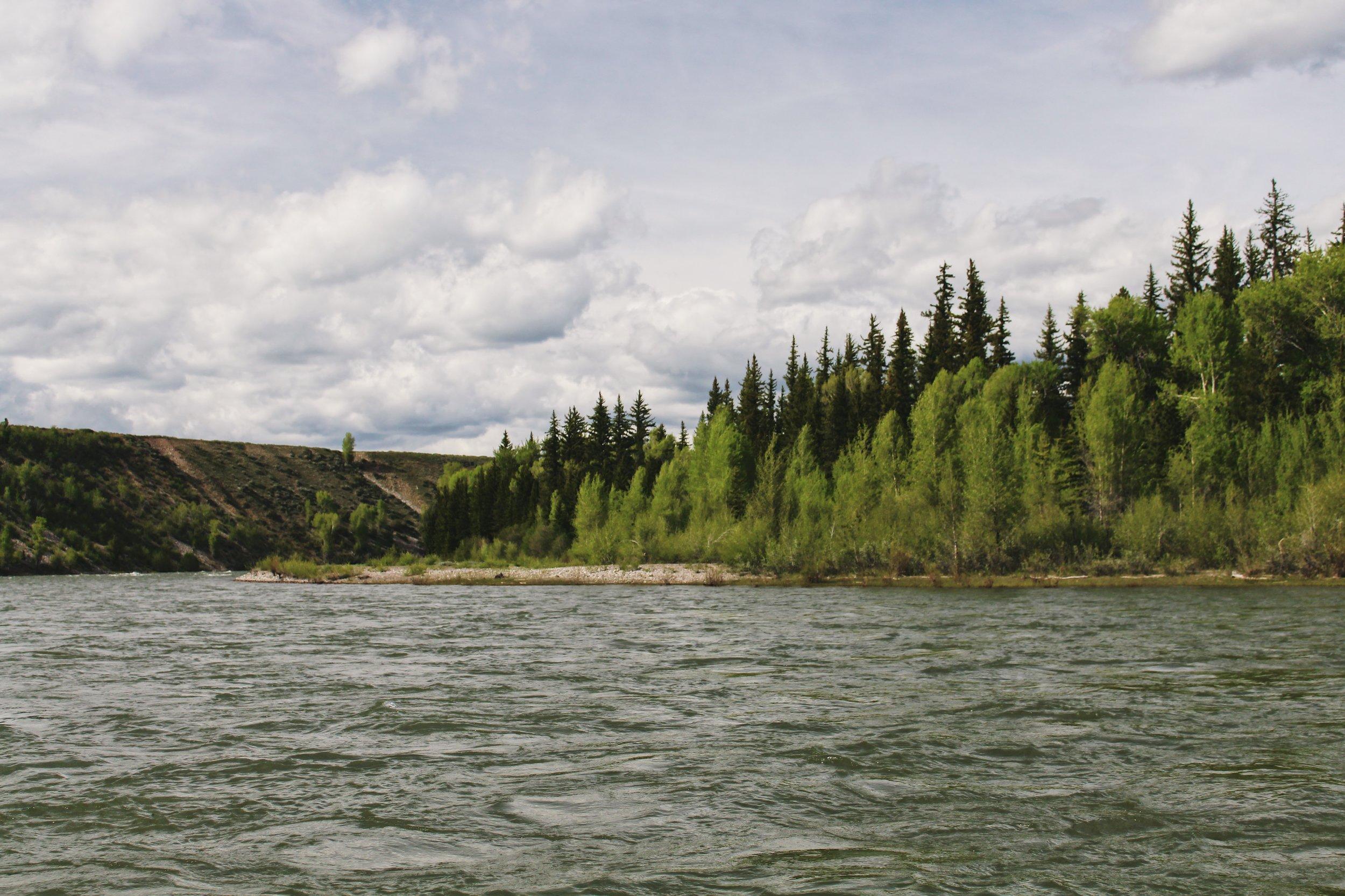 Snake River [3].JPG