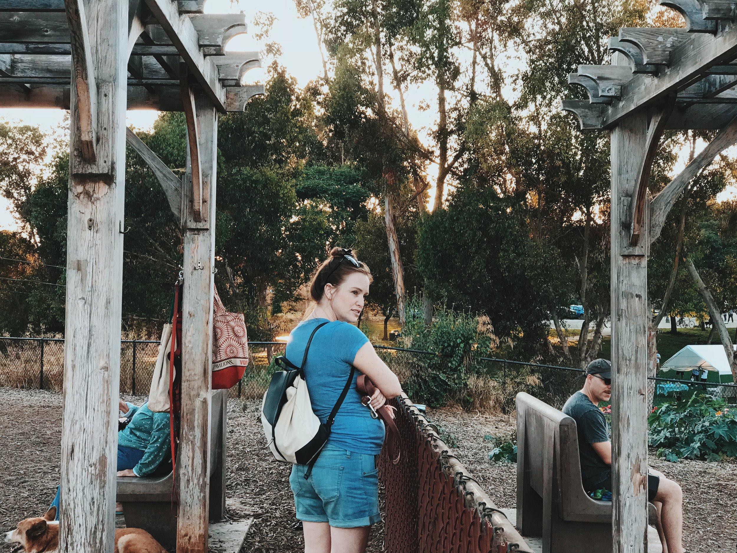 #209 Dog Park Greens.JPG