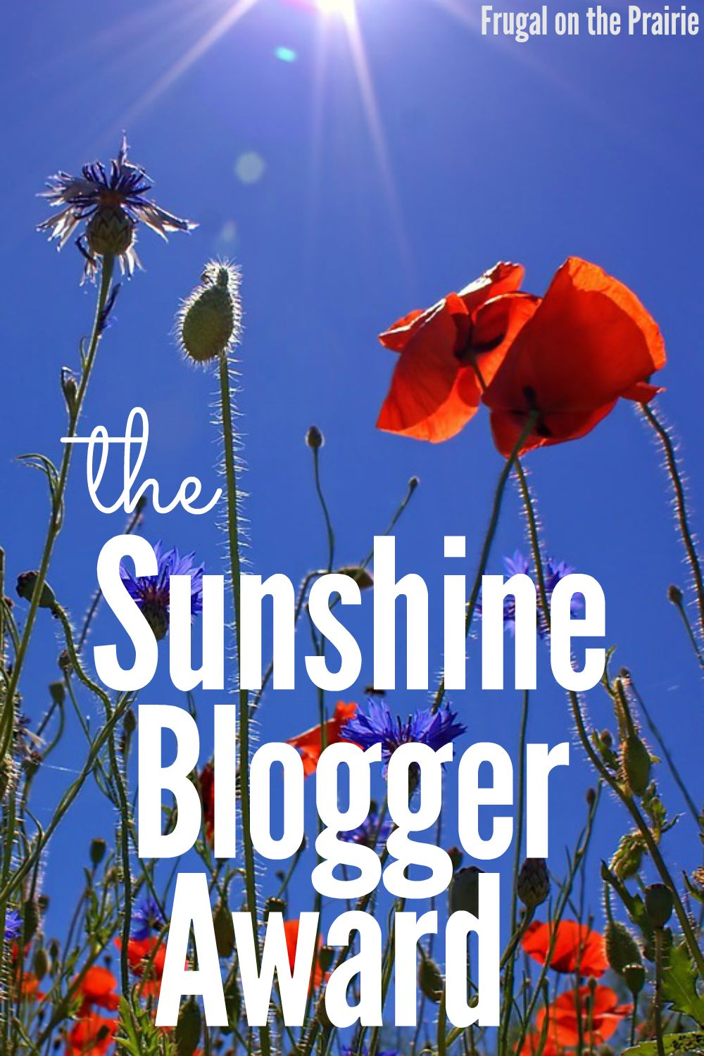 The Sunshine Blogger Award is given to those who are inspiring and bring sunshine into the lives of their readers and fellow bloggers.