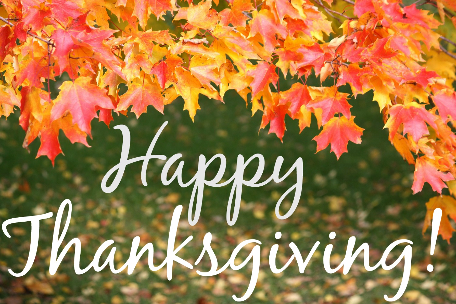 Wishing you wonderful readers the happiest of Thanksgivings! I hope your holiday includes tons of laughter and a mountain of delicious food!