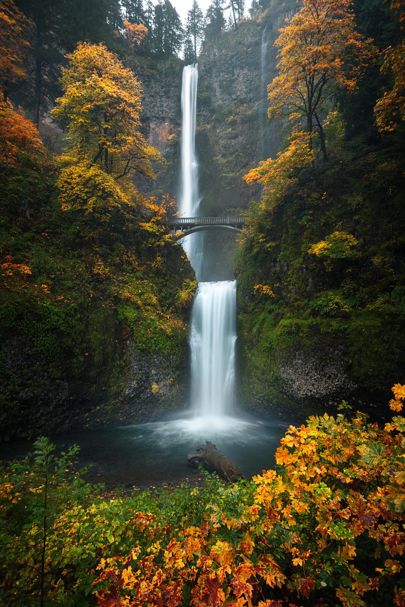 Multnomah Falls, Oregon (Fall, 2016)